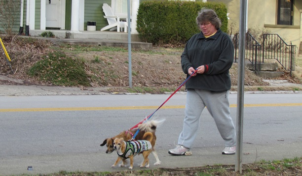 Barbara walking two dogs of a regular client around the Capitol area.
