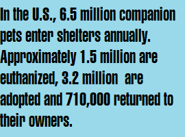 In the U.S., 6.5 million animals enter shelters annually